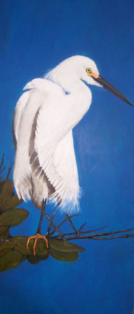 Snowy Egret Box Desk Top